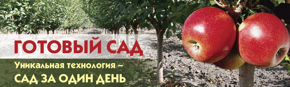 """Уникальная технология в питомнике """"Немцево"""" - готовый сад за один день!"""